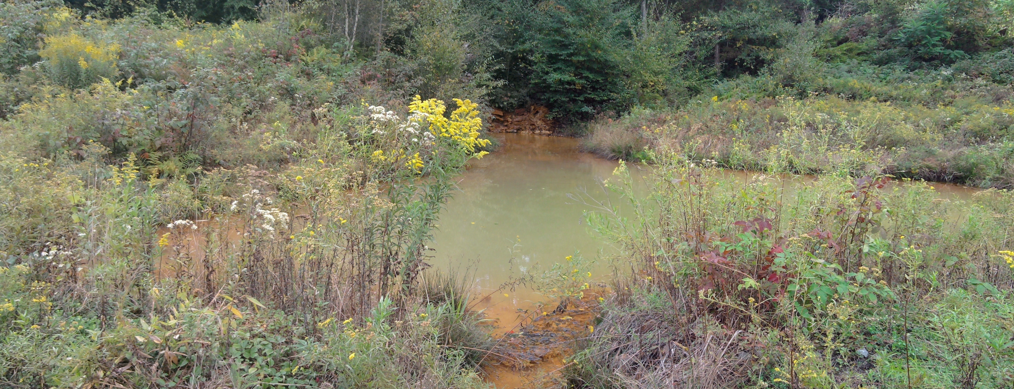 Lewis Mine Discharge and Forebay to Vertical Flow Wetland Treatment System