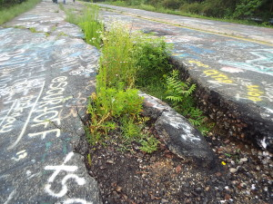 Old Route 61