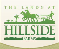 The Lands at Hillside