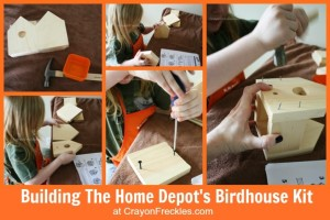 HOME DEPOT Birdhouse Kit.